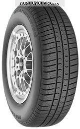 фото шины Michelin Weatherwise II